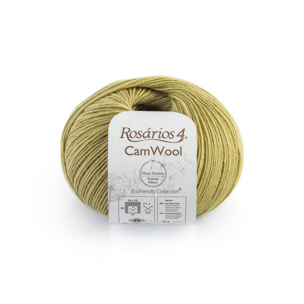 CamWool-09