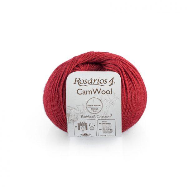 CamWool-13
